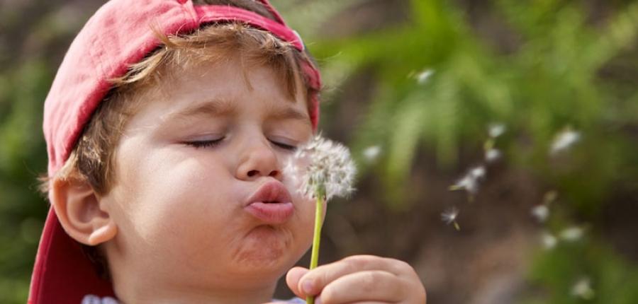 Acura cumple Deseos de niños mexicanos